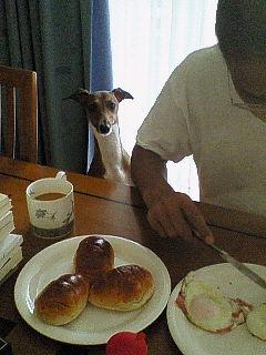 誰の朝食?