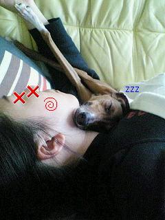 お疲れちゃん×2
