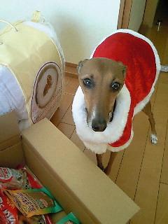 クリスマス☆イブ