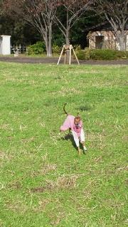 お洋服でフリーズ、公園でトケル。
